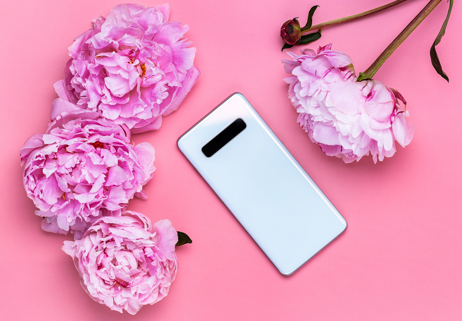 Phone case trends for Apple and Samsung handsets
